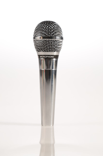 microphone-846048_640